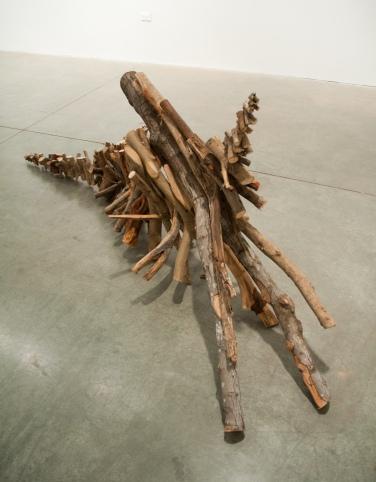 y branches-3